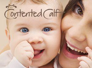 Contented Calf